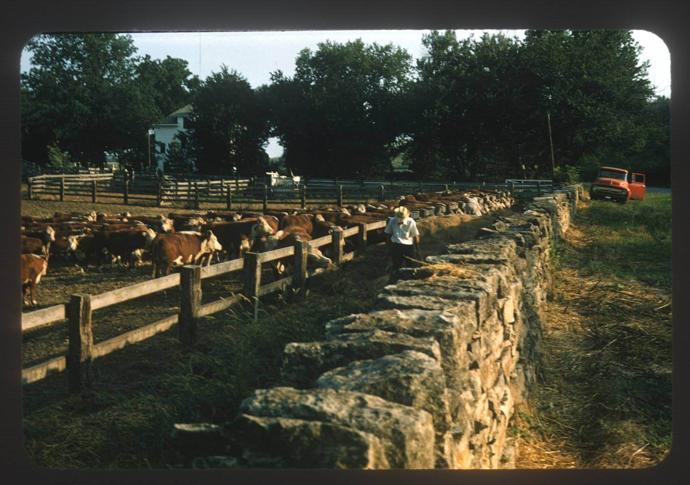 Stone fence and corral