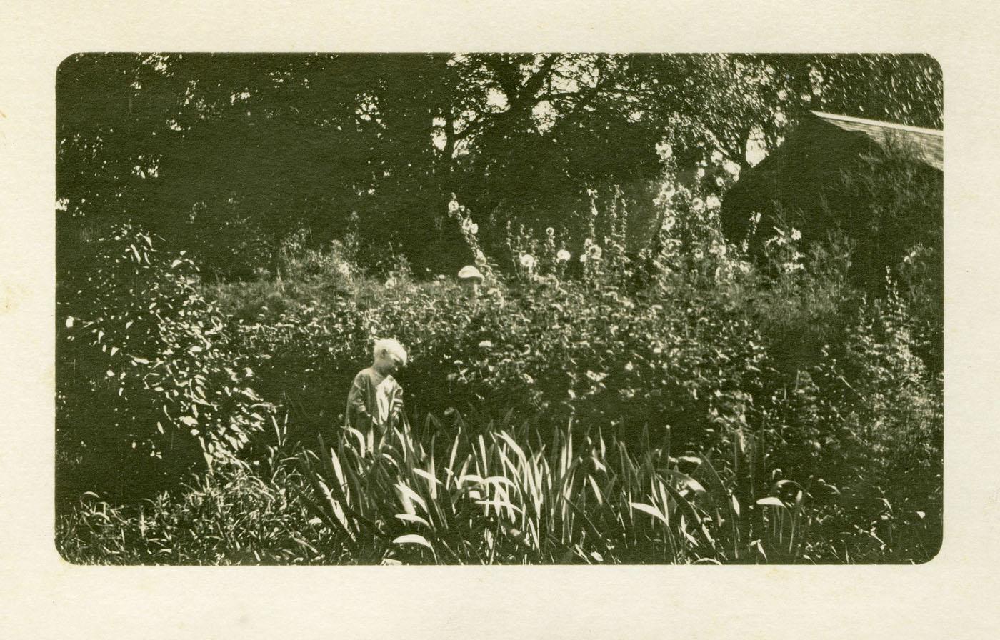 child in hollyhock garden
